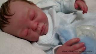 Help name my lastest reborn baby doll - Nikki Holland vlog #18