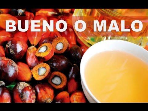 aceite de palma propiedades