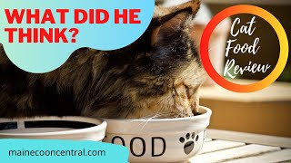 Maine Coon Cat Reviews Sheba Wet Food