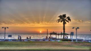 Palm on the Beach - Nahariyah - Israel
