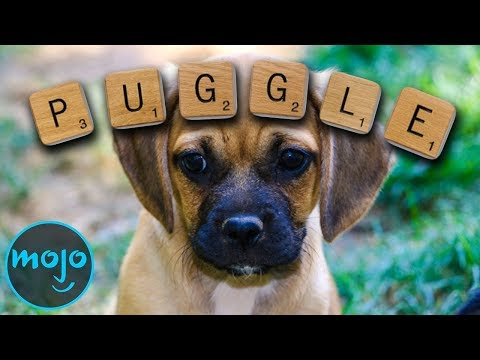 Top 10 Words You Can Now Use in Scrabble