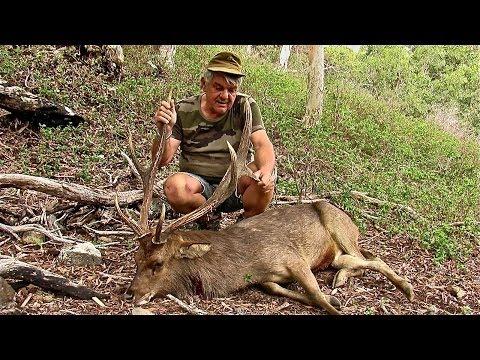 Hunting Rusa deer in New Caledonia part 27
