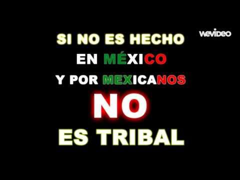 Cumbia Tribalera (Clean)