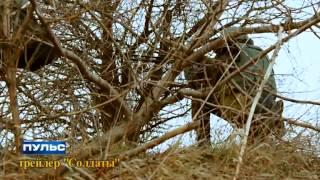 Пульс: Кліп з бійцями АТО. Випуск від 19.02.2015