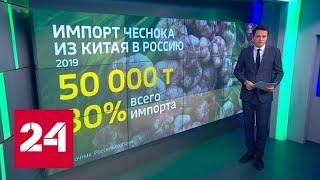 Вирусный след: экономический эффект от эпидемии - Россия 24