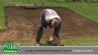 видео Где купить рулонный газон: выбираем поставщика