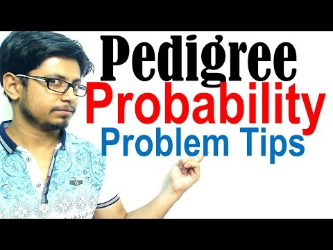 Pedigree probability problems | Risk calculation