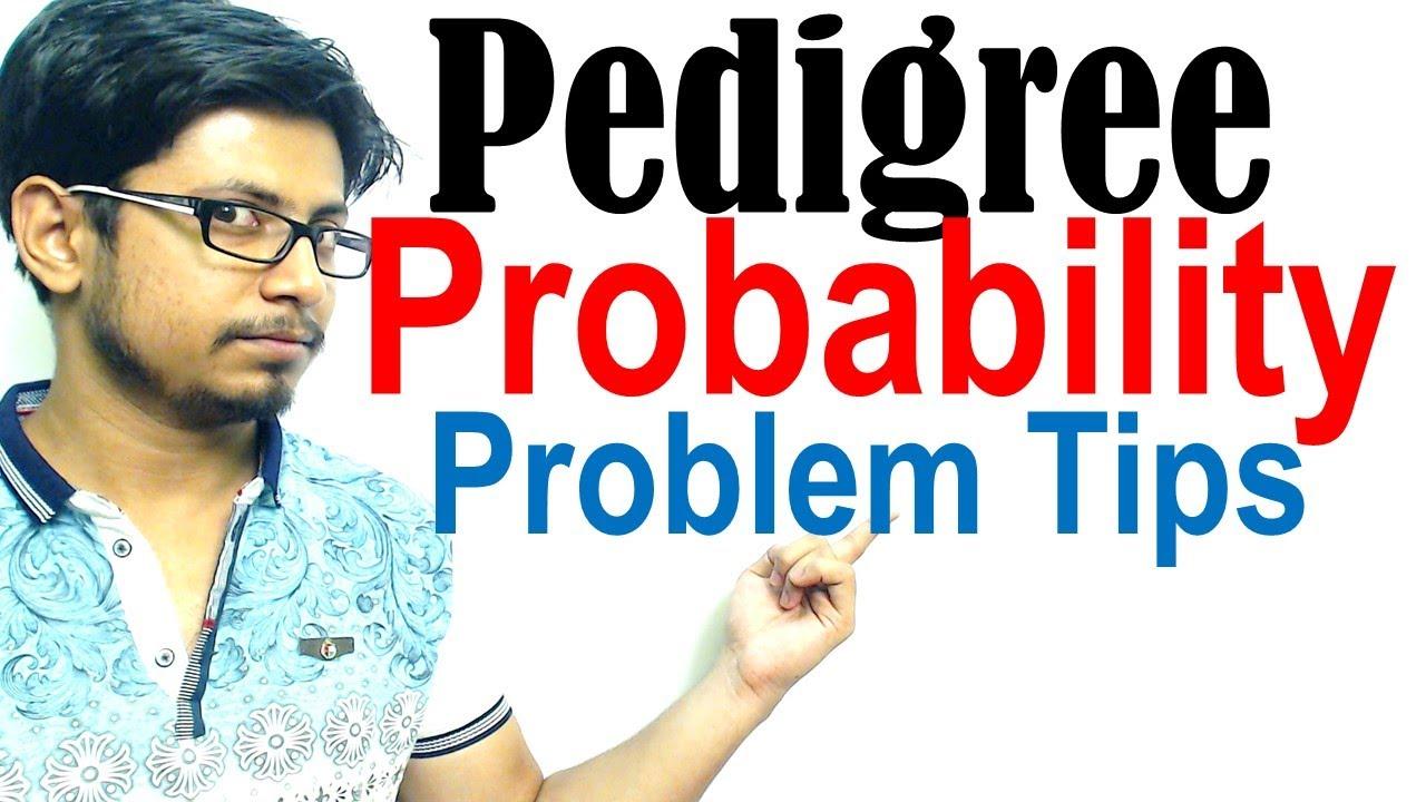 Pedigree probability problems | Risk calculation