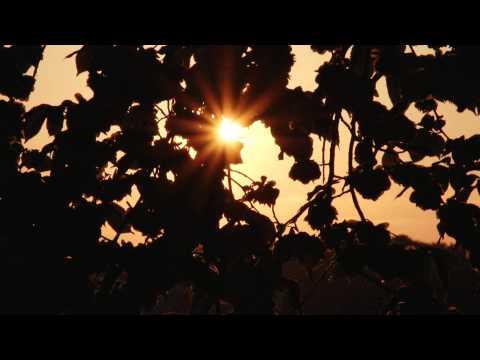 Sundown Karlskrona Sweden