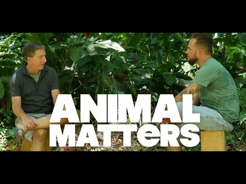 """Introducing """"Animal Matters,"""" Our New Video Series About Animal Rights, Factory Farms, and the Agriculture Industry"""