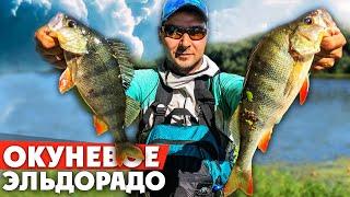 ВОДА КИПИТ ОТ ОКУНЯ! Ловля окуня на НАНОДЖИГ и МИКРОДЖИГ! Рыбалка 2020!