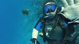 Дайвинг в Египте!(Один из Чек Дайвов на Красном море в Египте Шарм эль Шейх, бухта Nabq Bay , на береговом рифе отеля Nubian Villadge 5!..., 2015-09-04T04:22:30.000Z)