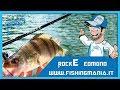 RockE Edmond Pesca - Canna Ultra Light Fishing - Fishingmania.it