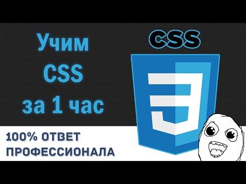Учим CSS за 1 час! #От Профессионала