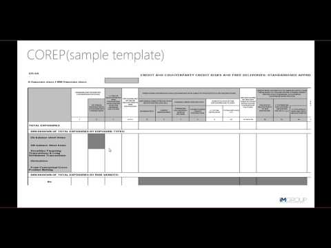 COREP and FINREP Reporting Overview