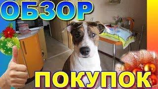 видео Пледы для собак