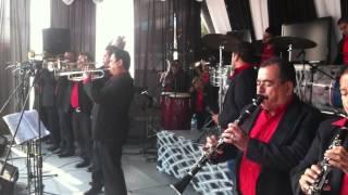 VUELA PALOMA - La Tradicional De Mazatlan