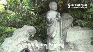 Gambar cover STAFA REISEN Hotelvideo: Stadtbesichtigung Xian, China