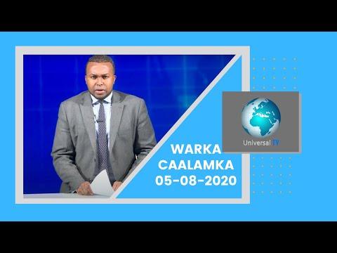 Warka Universal TV 05 8 2020