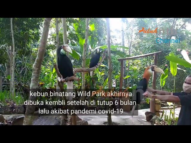 Yuk....!!! Liburan ke Kebun binatang  Wild park Life