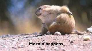 Patty Mattson - Sugarland It Happens Parody Music Video