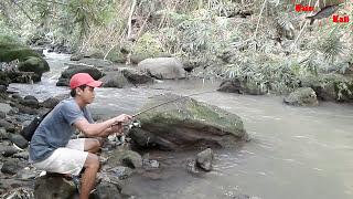 Kaget!!! JORAN HAMPIR PATAH dapat ikan Besar