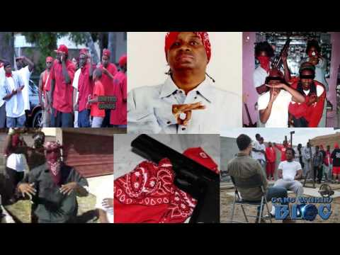 The History of the Bloods (California)