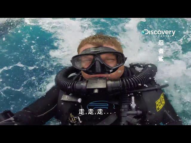 忍者鯊 001世界各大洋中有一幫精銳殺手這六種具備獨特技能與武器的鯊魚 HD MP4檔