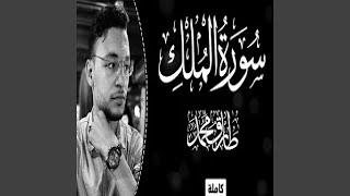 طارق محمد سورة الملك