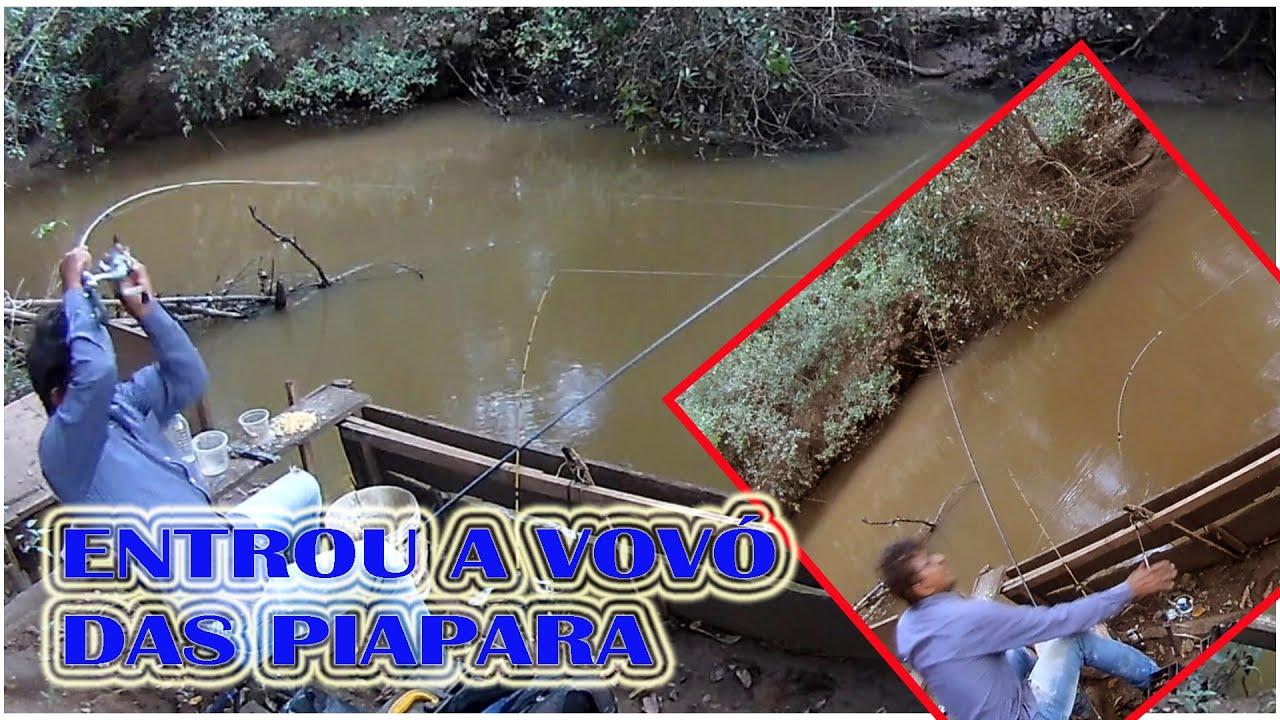 """Download AS VOVÓS VIERAM CAPIAU X PIAPARÃO """"PESCARIA E PRESEPADAS''"""