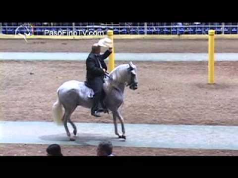 Ponce 2012 Caballos De Paso Fino 72 a 90