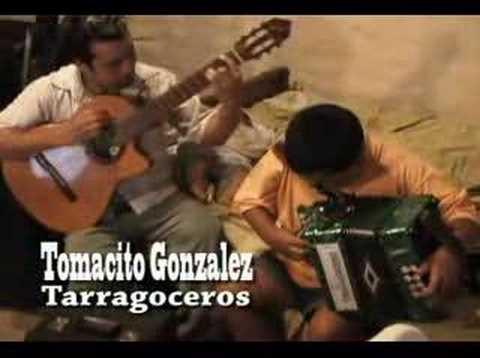 Tomacito Tarragoceros Videos De Viajes
