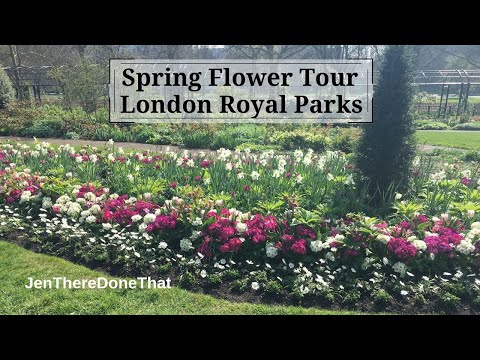 Spring Flowers in London Royal Parks