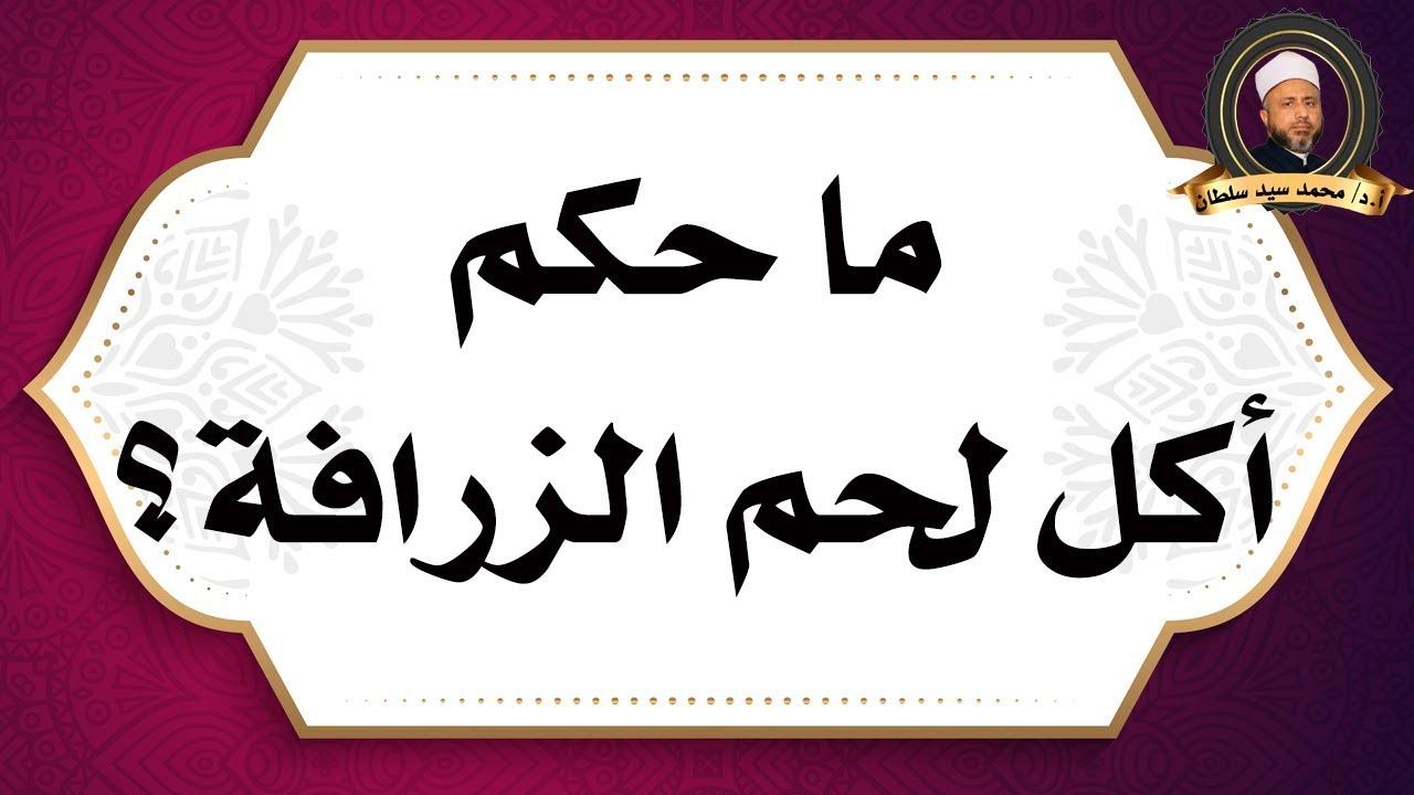 ما حكم أكل لحم الزرافة الأستاذ الدكتور محمد سيد سلطان Youtube