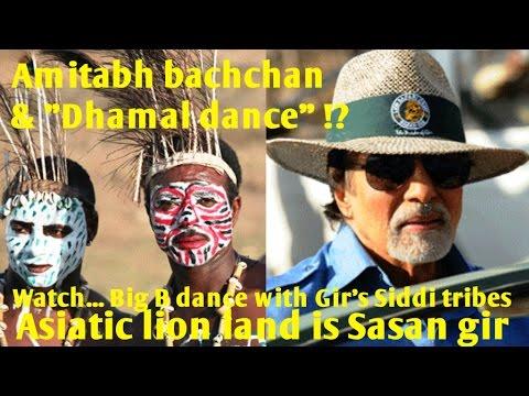 "Bollywood superstar Amitabh bachchan ""Dhamal dance"" with African origin Siddi tribes in Sasan gir"
