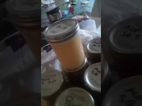 Canning squash and eliminating debt