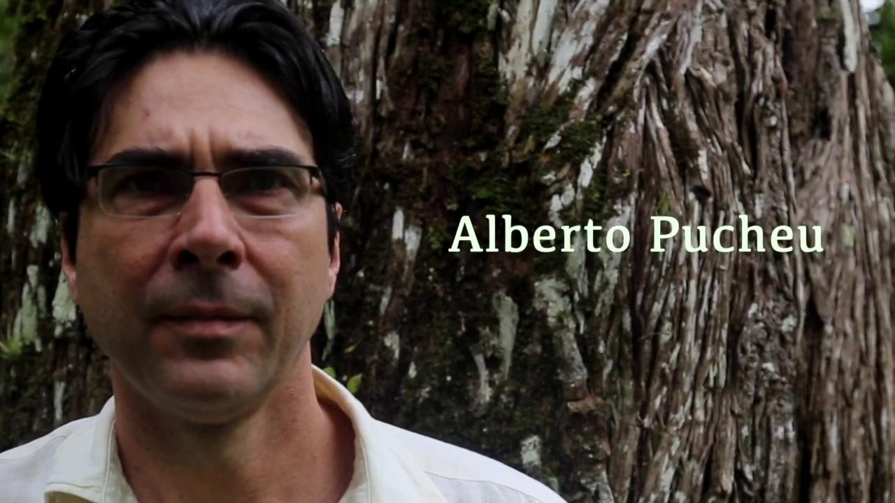 Alberto Pucheu