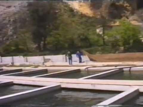 Santiago de la Espada. Piscifactoría del Río Zumeta.