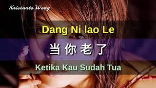 Lei Ting 雷婷 - Dang Ni lao Le 当你老了 (Ketika Kau Sudah Tua)