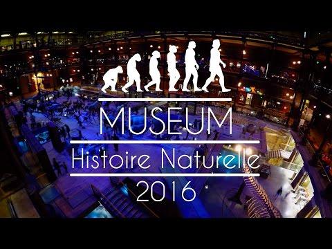 Muséum d'Histoire Naturelle | Paris