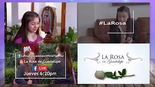 ¡Conéctate con La Rosa de Guadalupe este jueves!