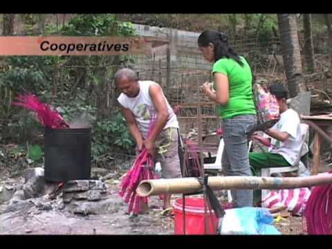 Philippine Microinsurance Framework