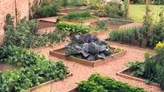 Diy Backyard Vegetable Garden Decorating Ideas