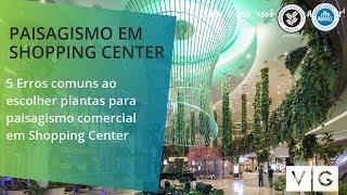 Conheça os 5 Erros mais comuns no paisagismo em shopping center - Vertical Garden