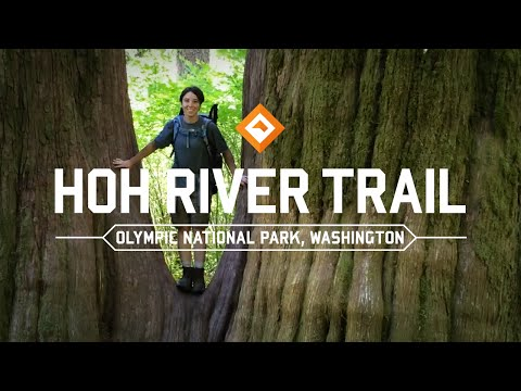 Backpacking Washington - Hoh River Rainforest Trail