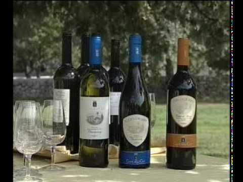 Agrinatura, GIANCARLO CECI (Organic Wine)