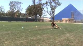Pro Agility II: The 20-Yard Shuttle