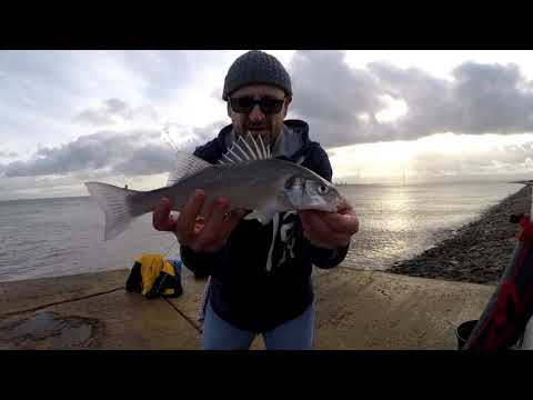 BASS WINTER FISHING STRONG WESTERLY WIND MEDWAY RIVER