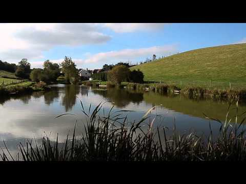 LOWER HOLLACOMBE FISHERY, CREDITON, DEVON