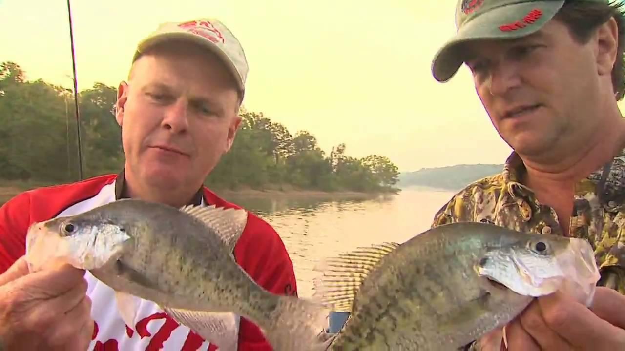 Green river lake crappie fishing plus a surprise catch for Bon tempe lake fishing